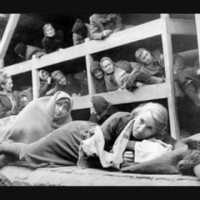 Vught Concentration Camp Barrack with women